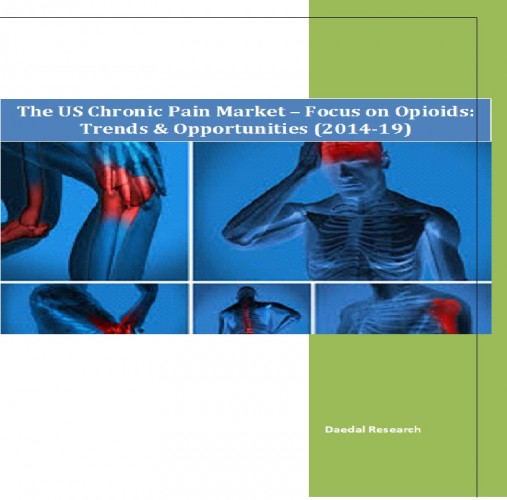 The US Chronic Pain Market (2014-2019) - Business Research Companies